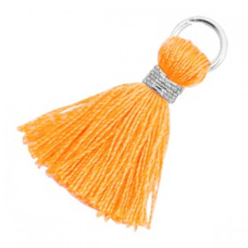 Kwastjes 1.8cm Zilver Fire orange