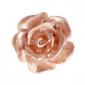 Roosjes kralen 10mm Wit-ginger rose pearl shine