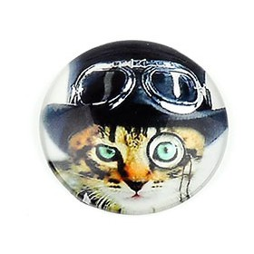 20mm cabochon steampunk print Striped cat