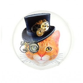 20mm cabochon steampunk print Ginger cat