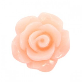 Roosjes kralen 10mm shiny Peach