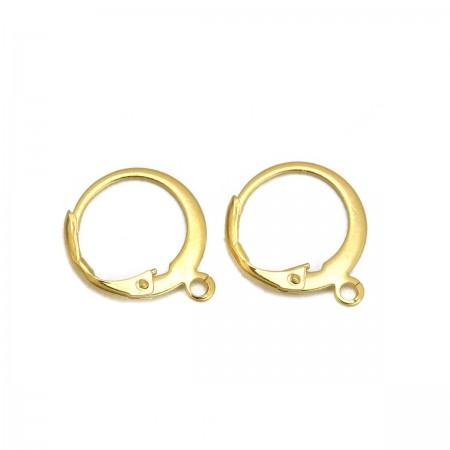 RVS oorbellen stainless steel Goud